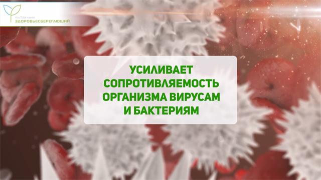 Шиповник против вирусов и бактерий